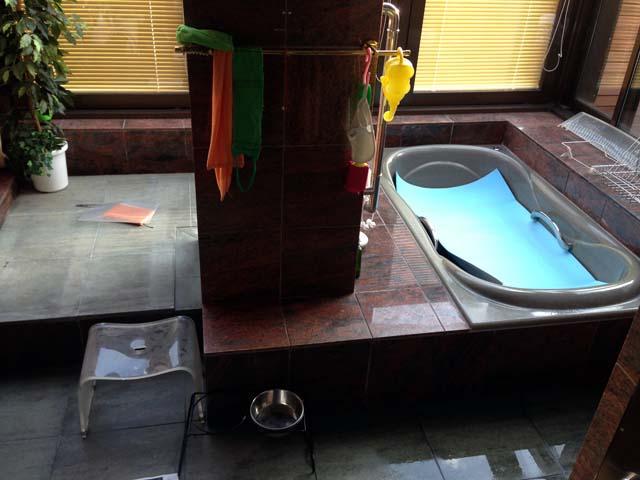 戸建てのお風呂の浴槽周り
