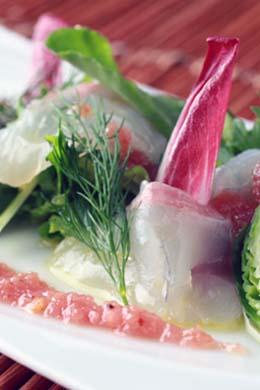 こぶ〆真鯛のカルパッチョ