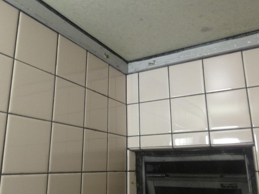 劣化した在来工法のお風呂の天井