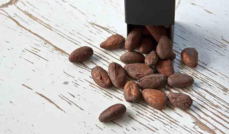 フォラステロ種のカカオ豆