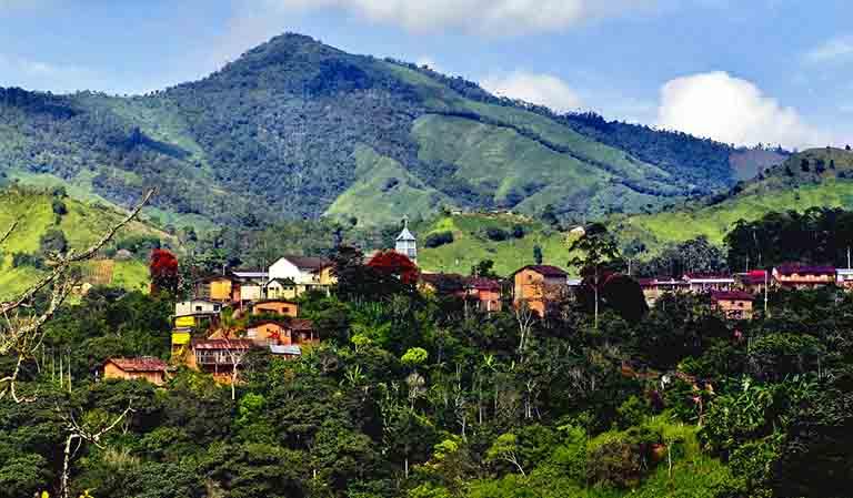 アリバ種が栽培されるエクアドルの高地