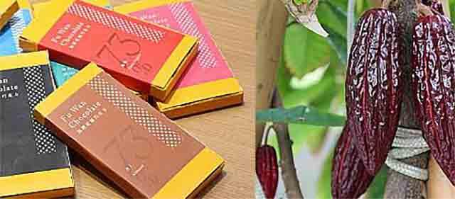 フーワンチョコレートと台湾産カカオ豆